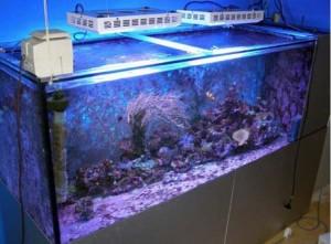 60W Aquarium LED Light